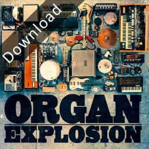 NLP4118_OrganExplosion_Schlauchalbum_06