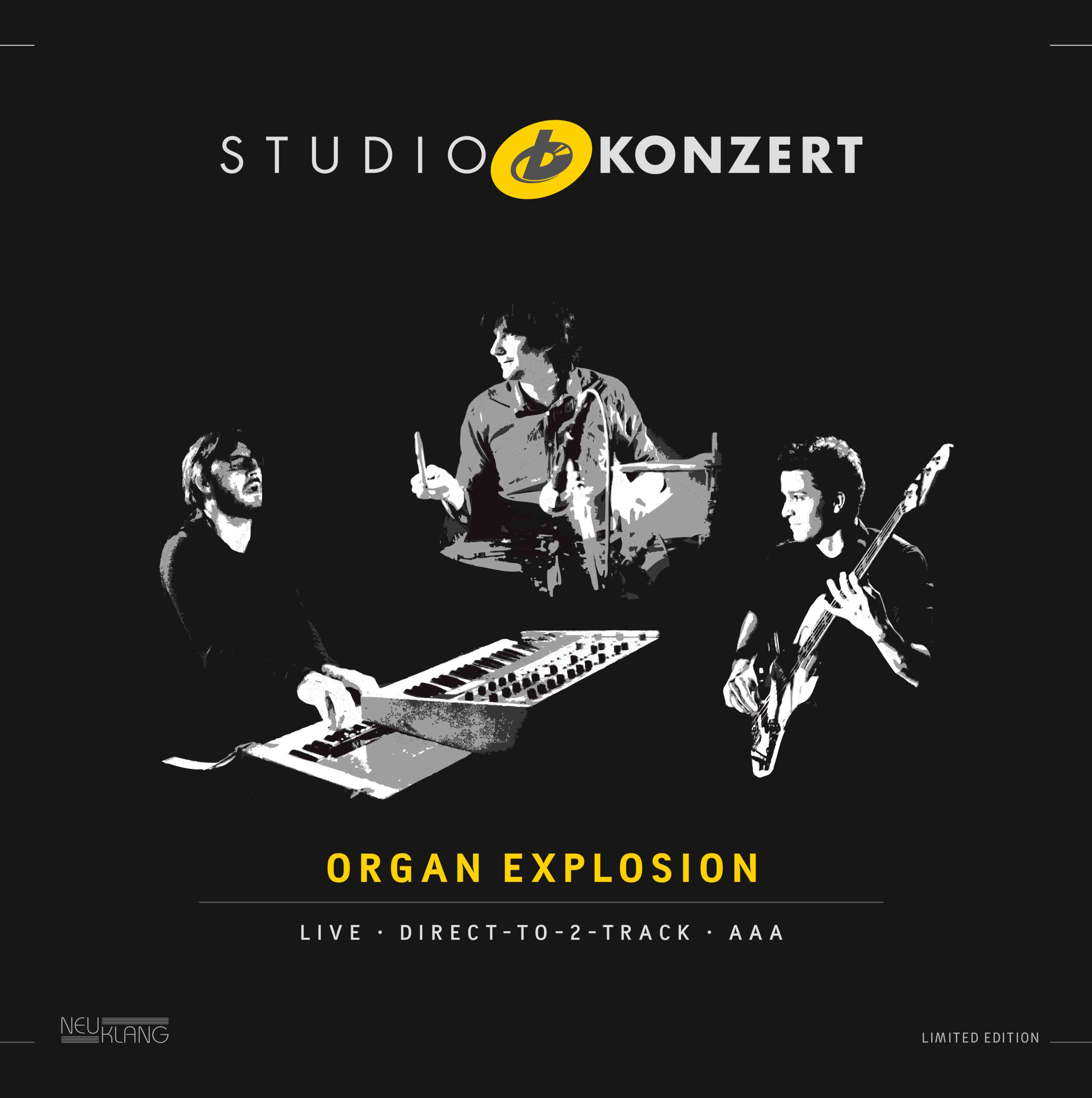 Organ Explosion Vinyl Cover